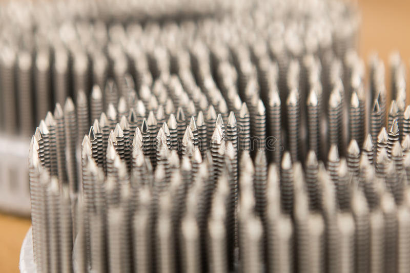 Metal nails on a plastic roll for pneumatic nailers gun. Macro close up stock photography