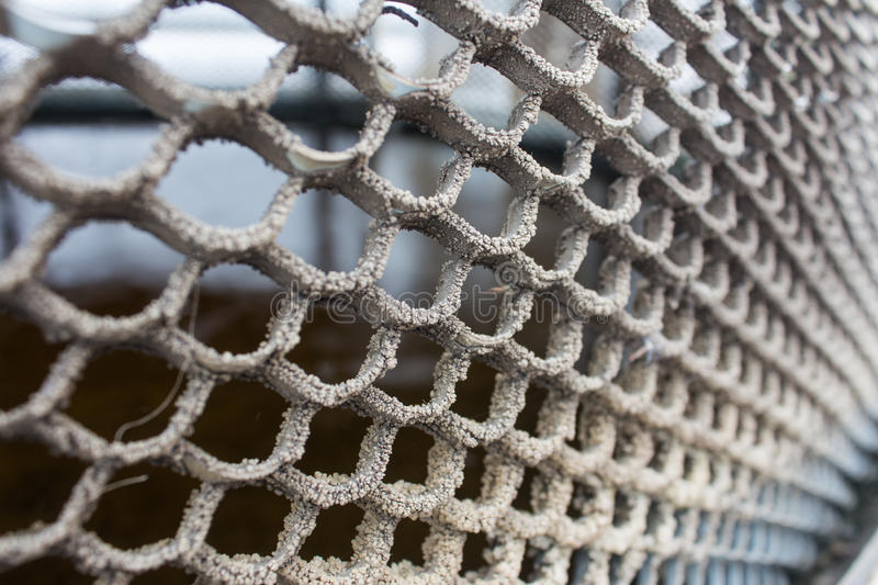 Metal old bronze texture as the mesh and cells. Metal old bronze texture as the mesh and cells stock photo