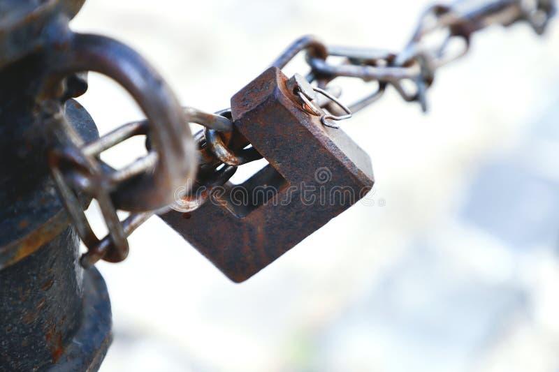 Metal padlock and chain link. Metal padlock and chain link, closeup royalty free stock image