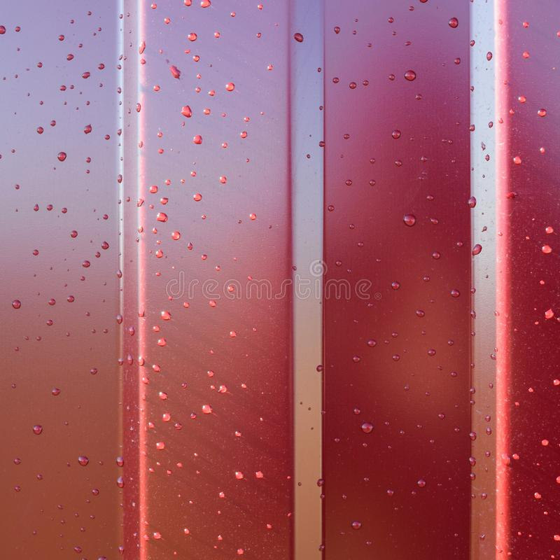 Metal profile. Diagonal pattern of metal profile. Fences from th. Diagonal pattern of metal profile. Fences from the galvanized iron painted by a polymeric stock image