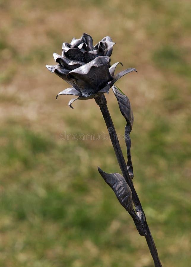 Metal rose stock image