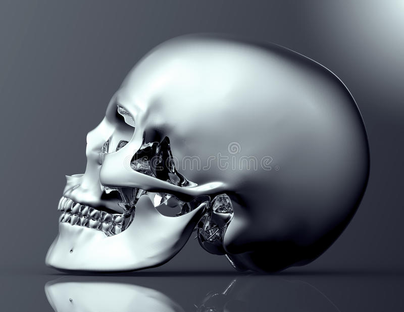 Metal scull isolated on dark background with clipping path vector illustration