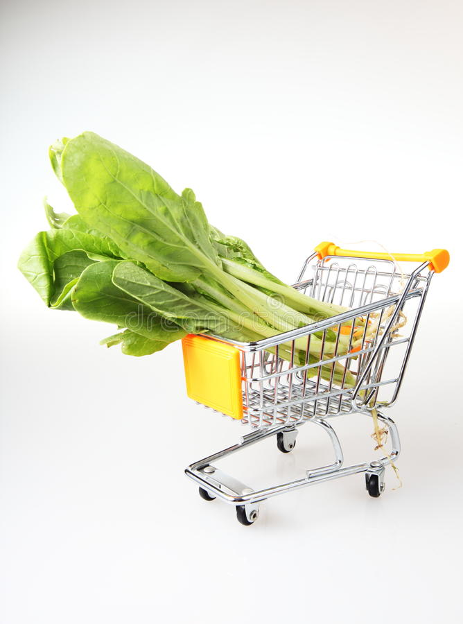 Download Metal shopping trolley stock photo. Image of products - 24091314