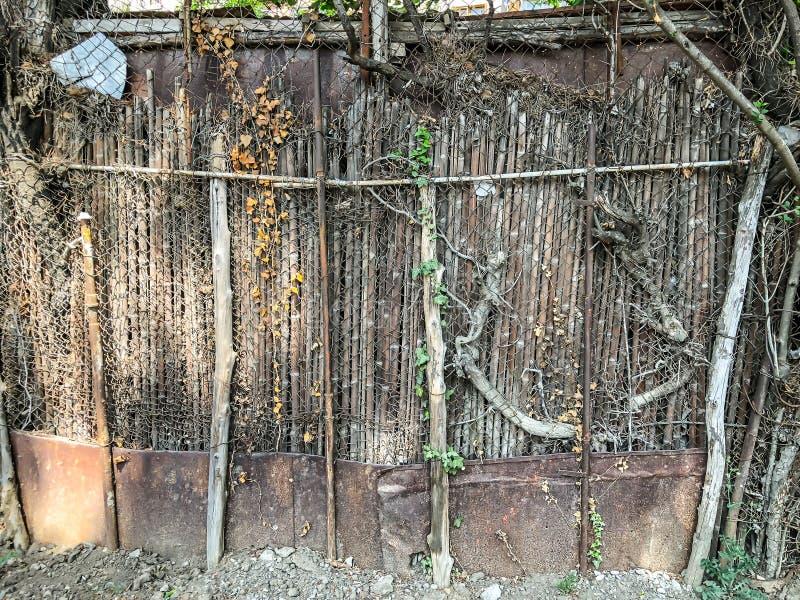 Metal siatka i drewniany ogrodzenie z furtą przerastającą z bluszczy krzakami, zaokrągleni drzewa w jardzie zdjęcie royalty free