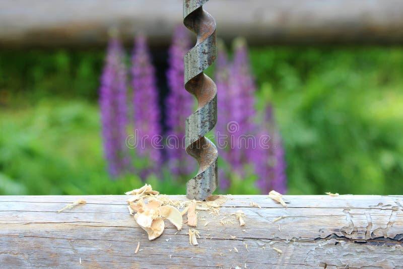 Metal spirali świder dla robić dziury w belach gdy gromadzić drewnianą ramę i budujący dom przeciw tłu purpury l obraz stock