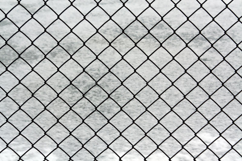 Exelent Wire Mesh Fence Designs Embellishment - Everything You Need ...