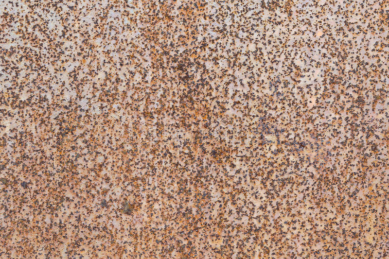 Metall för metallväggark Bladrosten är synlig som små prickar och stänk arkivbilder