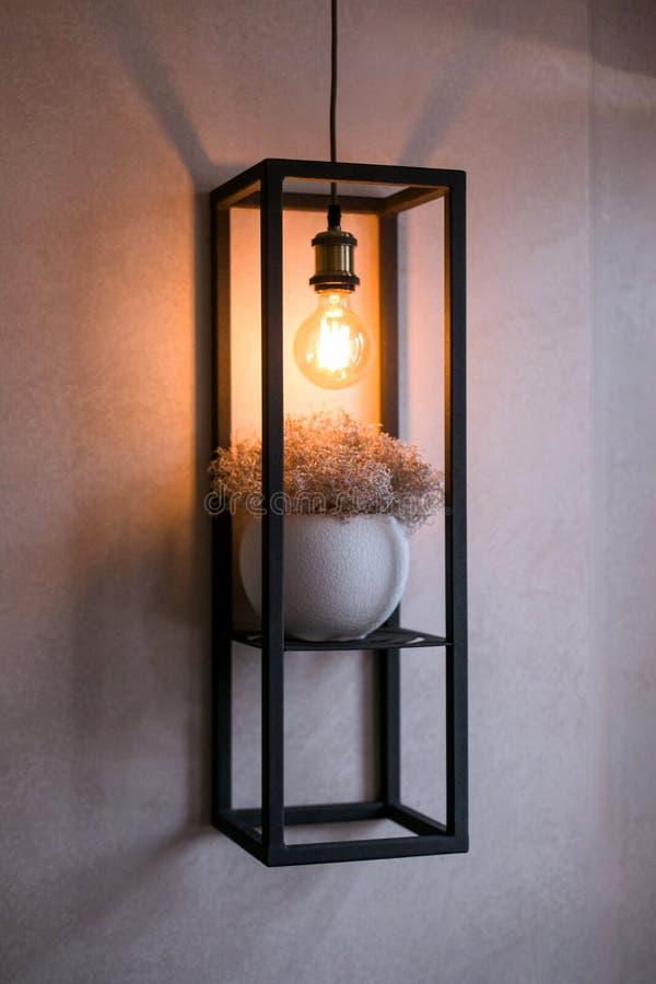 Metallhylla på en grå vägg med en kruka med torra örter och en lampa fotografering för bildbyråer