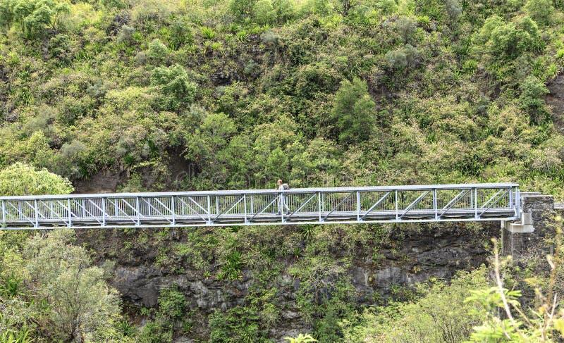 Metallic bridge crossing a river stock image