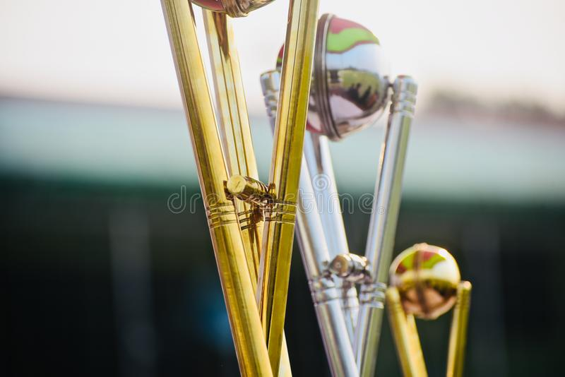 Metallic crests sports trophy object photo. The three metallic crests sports trophy object unique stock photograph stock photography