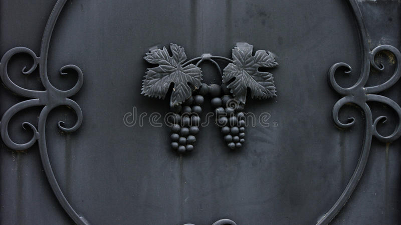 Download Metallic Grape Royalty Free Stock Photos - Image: 21048108