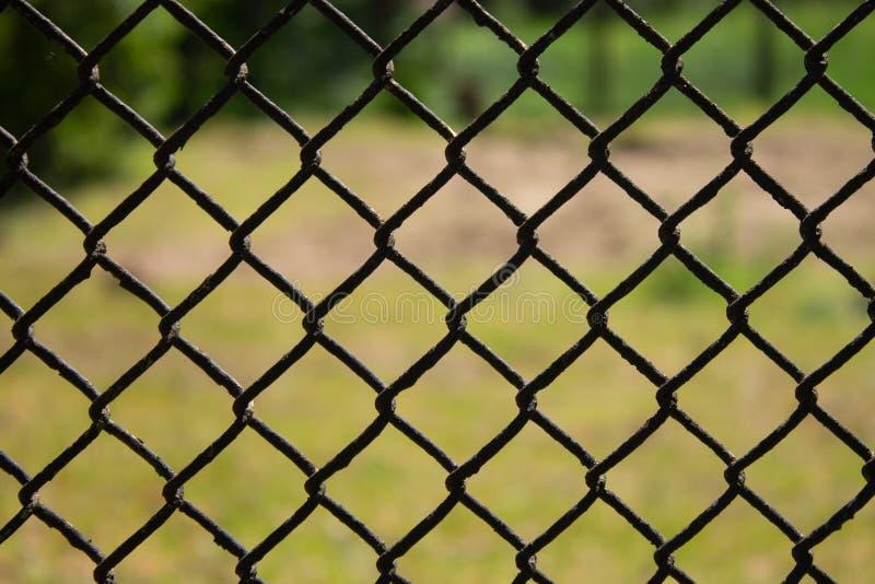 Metallingreppsstaket på bakgrundsnärbild för grönt gräs royaltyfri fotografi