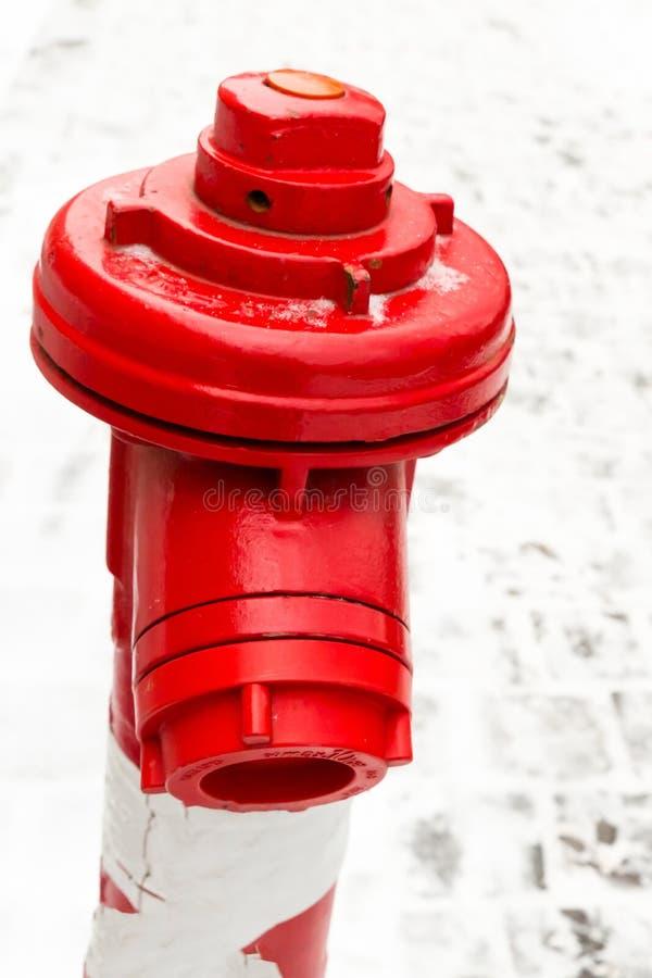 Metallischer roter Nahaufnahmeadapter des Feuerlöschanlagehydranten für Schlauch gegen einen Hintergrund des schneebedeckten Bere stockfotografie