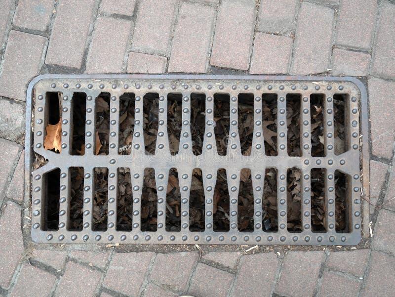 Metallisches Gitter der Nahaufnahme der Abwasserableitung auf einem B?rgersteig Ansicht von der Spitze mit Los gefallenem Blattla lizenzfreies stockfoto