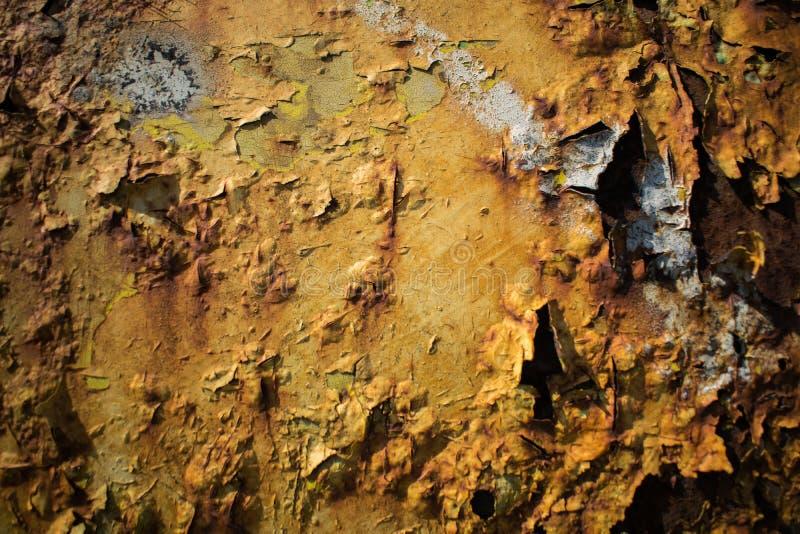 Metallisk yttersida som målas med mycket rost arkivbilder