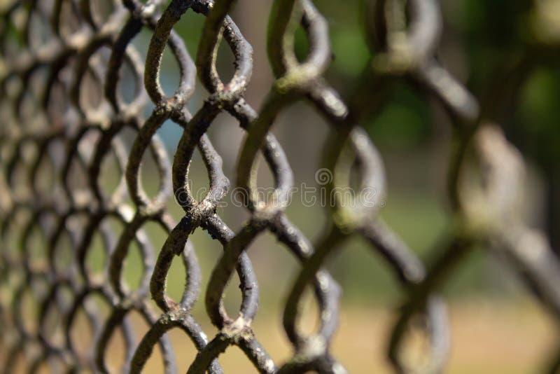 Metallmaschenzaun auf Hintergrundnahaufnahme des grünen Grases lizenzfreie stockfotos