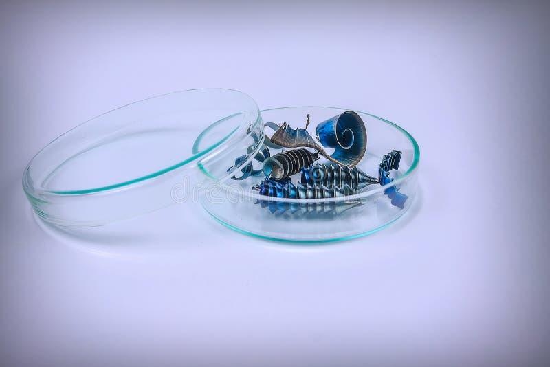 Metallshavings ligger i en exponeringsglasplatta på en ljus bakgrund royaltyfria bilder