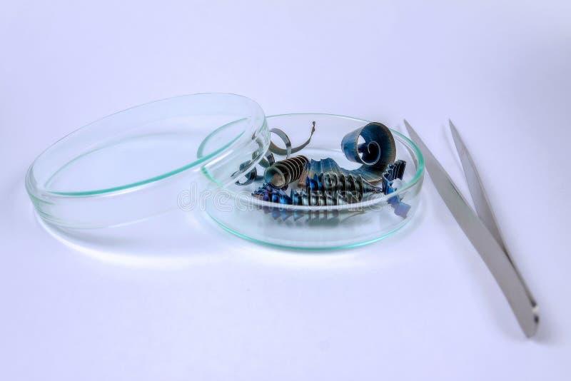 Metallshavings ligger i pincett för en exponeringsglasbehållare ligger bredvid dem royaltyfri foto