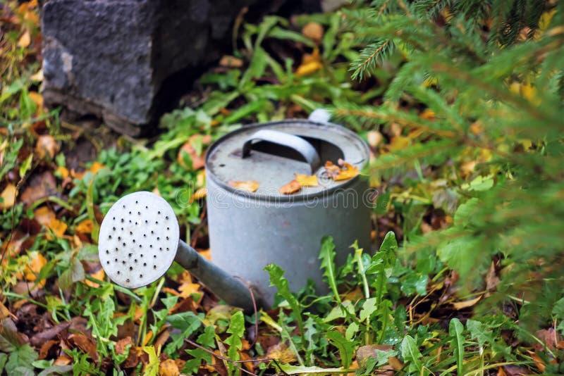 Metallträdgården som bevattnar kan och trädgården arkivbild