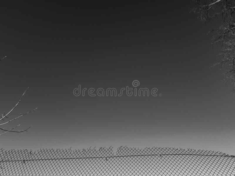 Metalu ogrodzenie Siatka metal czarny i biały fotografia stock