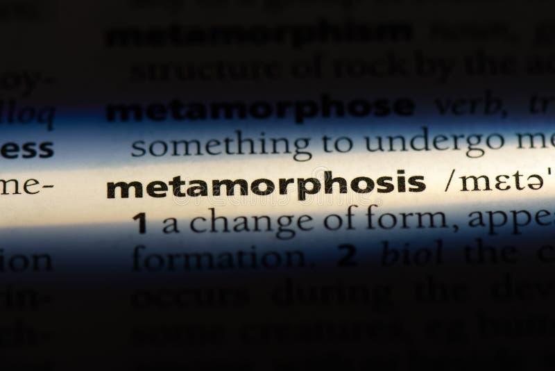 metamorphosis arkivfoton