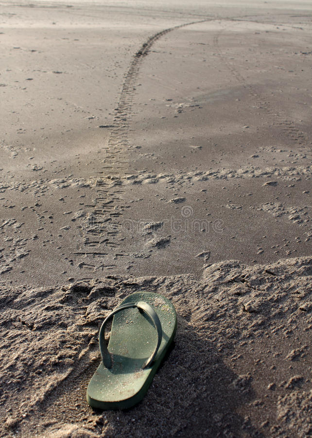 Download Long Way To Go stock image. Image of track, beach, chappal - 30290421