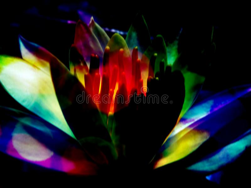 Spiritual Energies Flower. A metaphorical image of a spiritual lotus radiating colorful energies royalty free stock photos