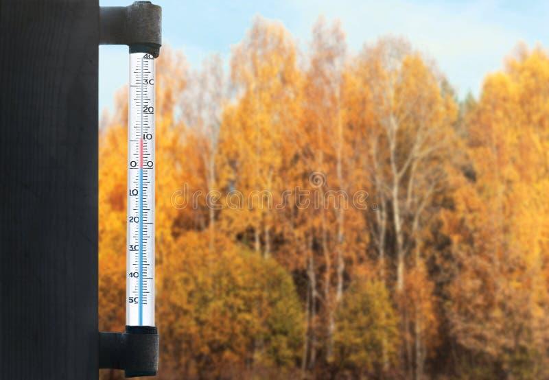 Meteorologie, Voraussage und Herbst verwittern Jahreszeitkonzept - Thermometer und gelben Baumwald über Glasfenster lizenzfreie stockfotos