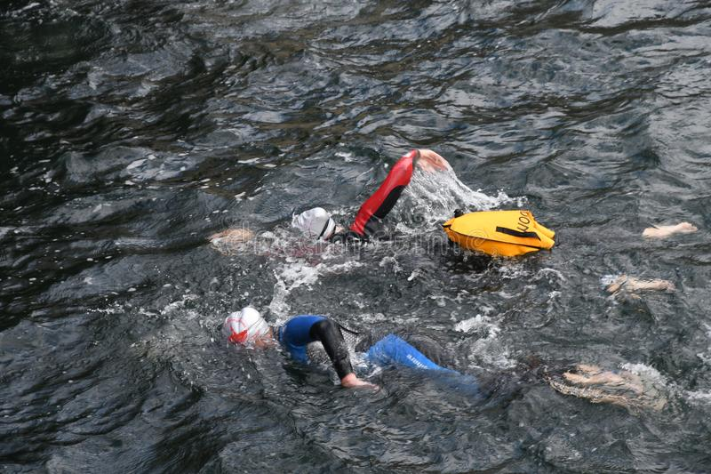 800 METER SWIMMING SPORTS. Copenhagen/Denmark 25.August 2018_ 800 meter swimming sport marathon in around Copenhagen habours canal today on saturday. . Photo stock photography