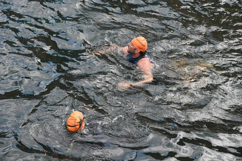 800 METER SWIMMING SPORTS. Copenhagen/Denmark 25.August 2018_ 800 meter swimming sport marathon in around Copenhagen habours canal today on saturday. . Photo royalty free stock photography