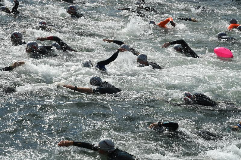 800 METER SWIMMING SPORTS. Copenhagen/Denmark 25.August 2018_ 800 meter swimming sport marathon in around Copenhagen habours canal today on saturday. . Photo stock photo
