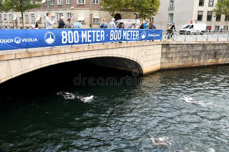 800 METER SWIMMING SPORTS. Copenhagen/Denmark 25.August 2018_ 800 meter swimming sport marathon in around Copenhagen habours canal today on saturday. . Photo stock images