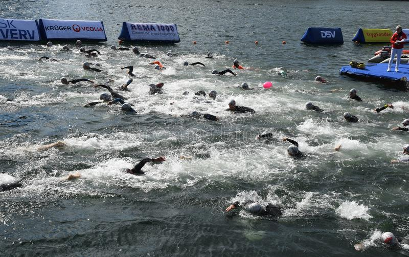 800 METER SWIMMING SPORTS. Copenhagen/Denmark 25.August 2018_ 800 meter swimming sport marathon in around Copenhagen habours canal today on saturday. . Photo royalty free stock photo