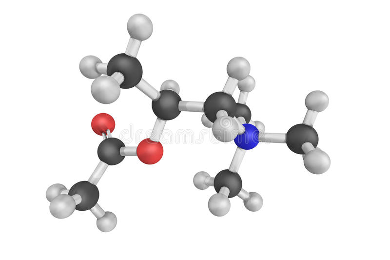Methacholine以氯化物形式 综合性胆碱酯类ac 库存图片