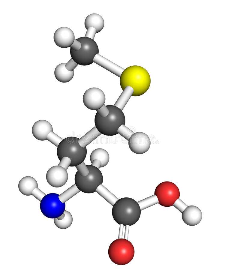 Methioninemolekyl stock illustrationer