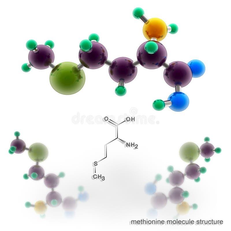 Methioninemolekylstruktur stock illustrationer
