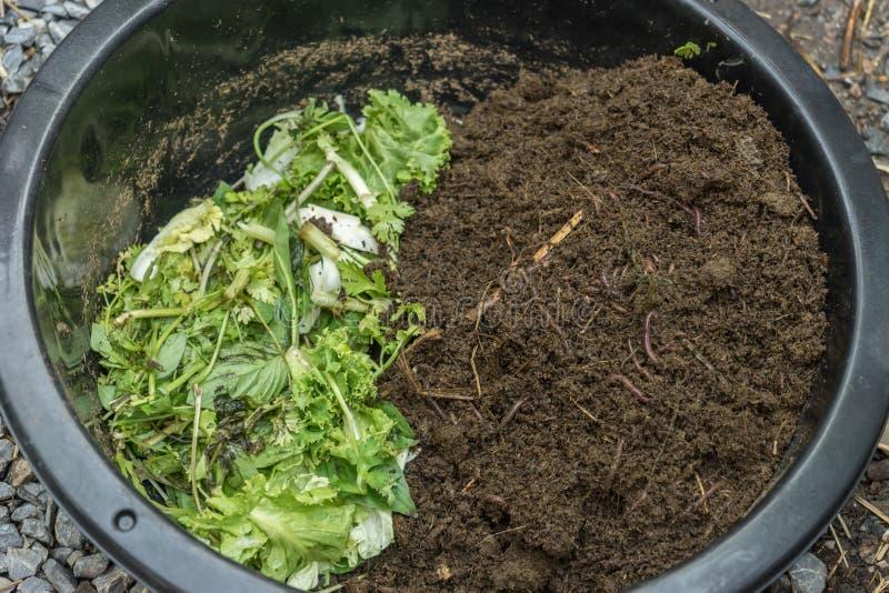 Methode aan het voeden van aardwormen stock fotografie