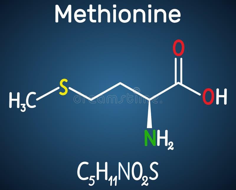 Metionina l metionina, encontrada, mol?cula del amino?cido esencial de M F?rmula qu?mica estructural en el fondo azul marino ilustración del vector