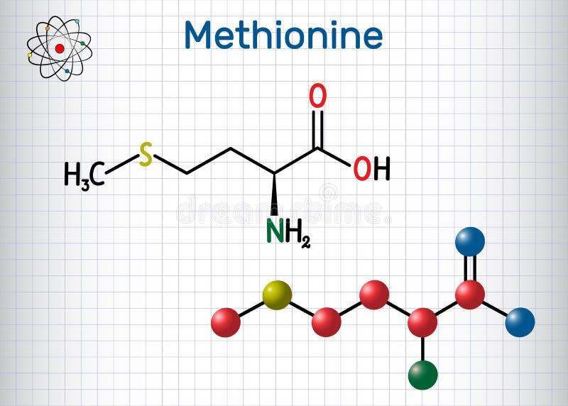 Metionina l metionina, encontrada, mol?cula del amino?cido esencial de M Hoja de papel en una jaula F?rmula qu?mica estructural y ilustración del vector