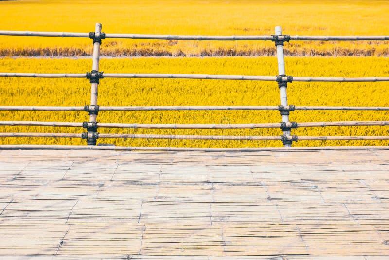 Metod för konstruktion för träbanabambutextur asiatisk bredvid gul guld- veterisfält i sommarnaturbakgrund royaltyfri fotografi