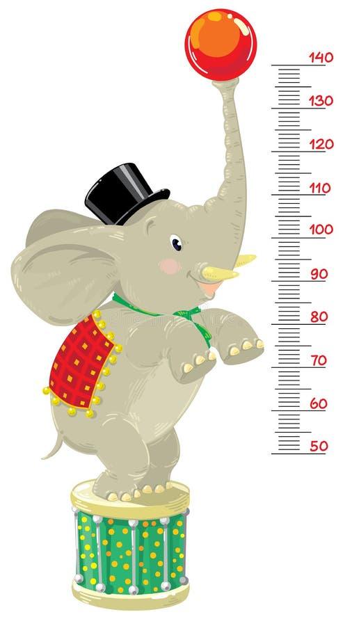 Metr ściana lub wzrost mapa z Śmiesznym słoniem ilustracja wektor