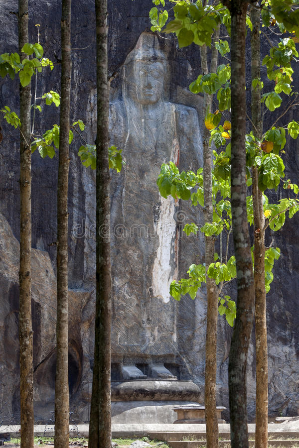 The 15 metre high Buddha statue emerges from woodland at Buduruwagala, near Wellawaya in central Sri Lanka. Dating from the 10th century, this is the tallest stock images