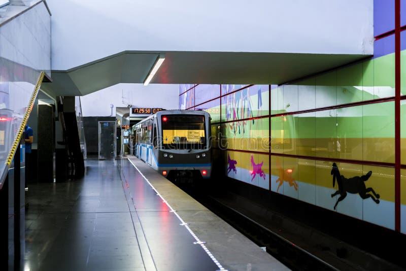 Metro moderno del pasajero que corre rápidamente en la falta de definición de movimiento de la estación fotografía de archivo libre de regalías