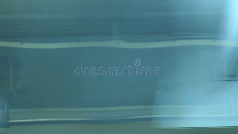 metro visa fönstret lager videofilmer