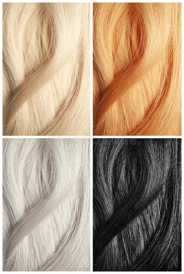 Metta con i campioni dei capelli di colore bellezza fotografia stock