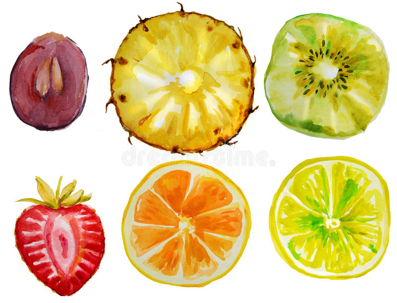 Metta con i frutti dell'acquerello fotografie stock