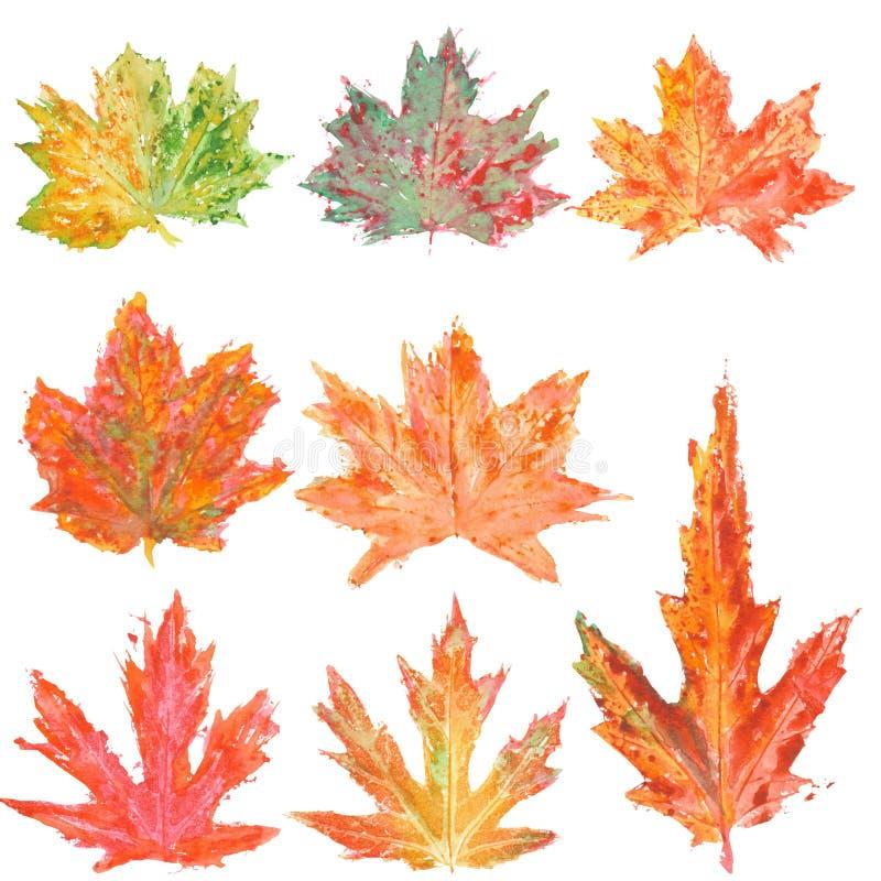Metta con le foglie di acero di autunno dell'acquerello royalty illustrazione gratis