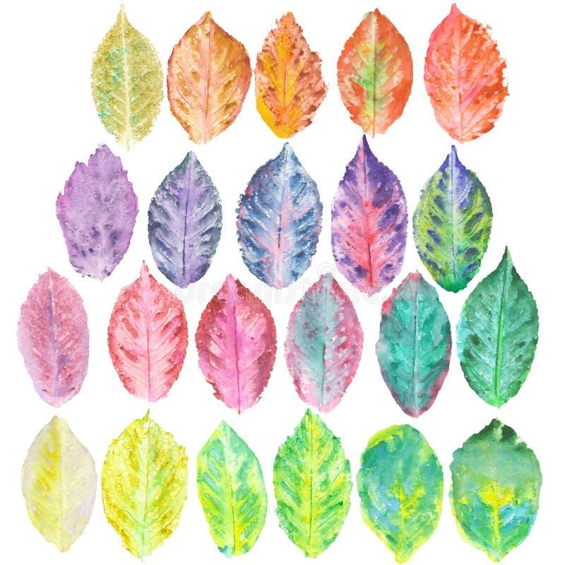 Metta con le foglie di autunno dell'acquerello royalty illustrazione gratis