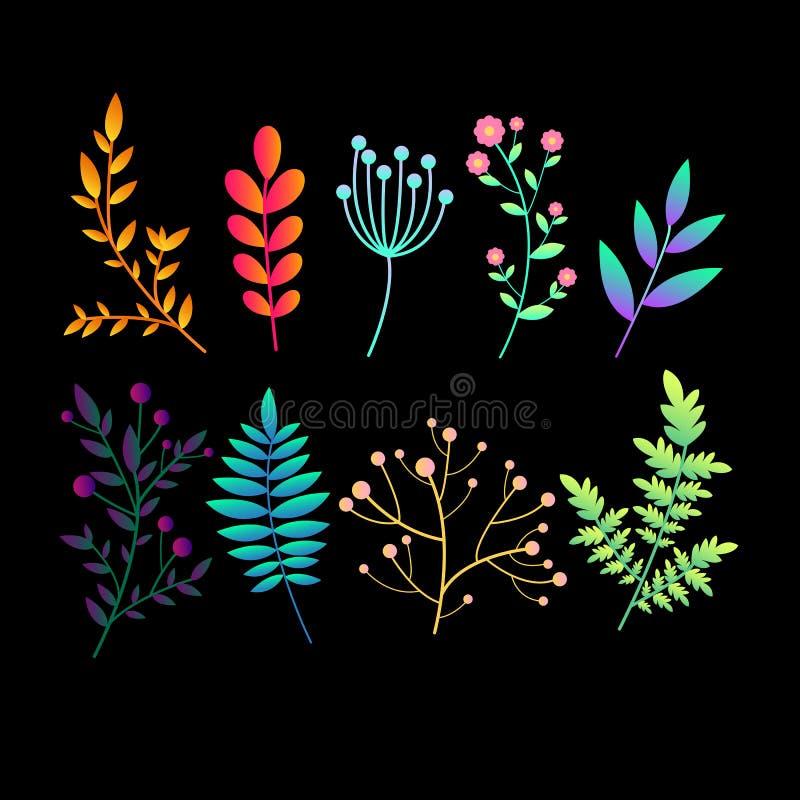 Metta con le piante, i rami e le foglie luminosi originali dell'estratto di pendenza Icone botaniche variopinte della raccolta de royalty illustrazione gratis