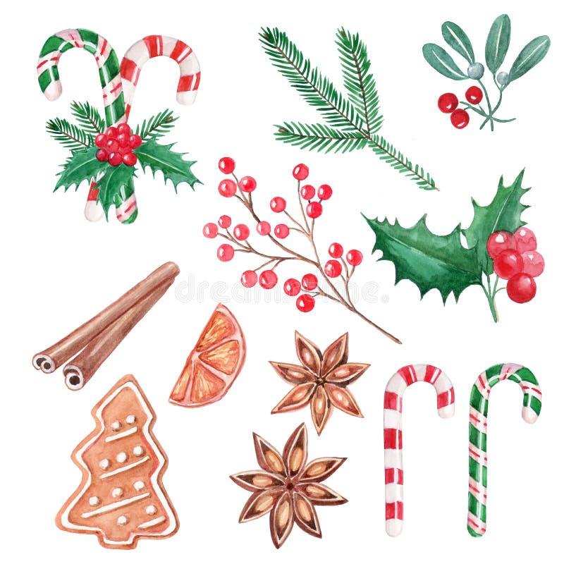 Metta degli elementi di Natale, le bacche rosse, le lecca-lecca, l'agrifoglio, cinnam illustrazione di stock